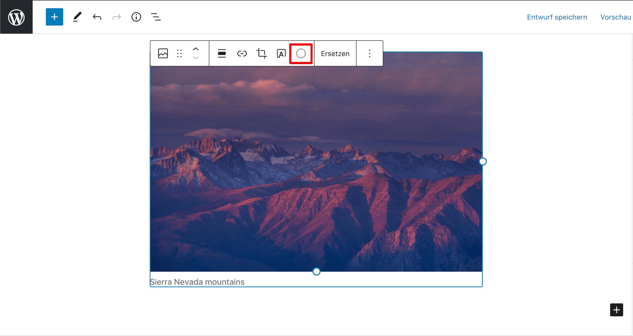Duotone Filter für Fotos in WordPress 5.8